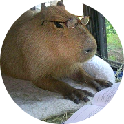 Capybara with Given/When/Then steps in acceptance testing